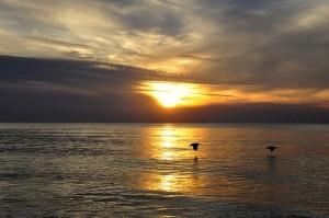 sunset-1079934_640