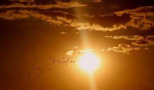 sunset-1625073_640